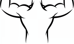 09:腰背部