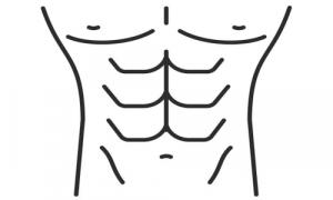 08:腹部